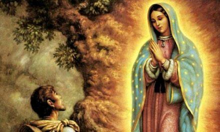 Sfânta Fecioară Maria de la Guadalupe în viața Reuniunii Mariane