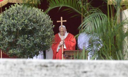 Papa Francisc în Duminica Floriilor: Isus ne învață să renunțăm la triumfalism