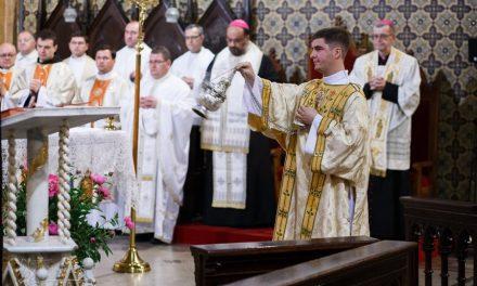 Întâlnirea delegațiilor liturgice responsabile pentru vizita Papei Francisc