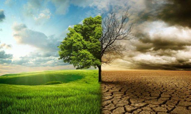 Zi de reflecție europeană «Laudato Si'»: către o schimbare a stilului de viață