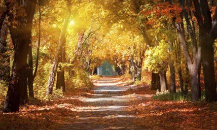 Septembrie: e timpul să te ridici și să pornești din nou