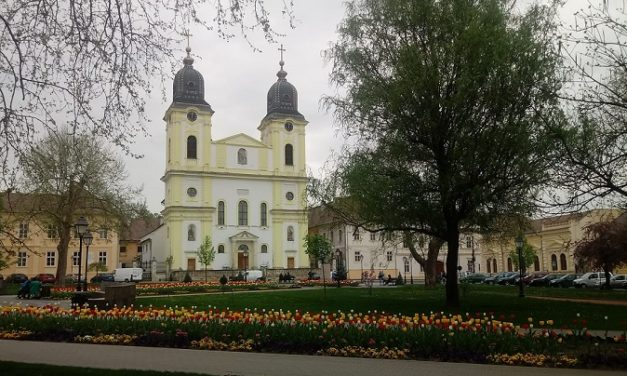 166 de ani de la ridicarea Episcopiei de Făgăraş și Alba Iulia la rang de Mitropolie