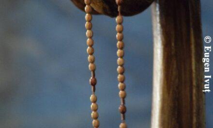 Modele de evlavie ale Sfinților față de Sfânta Fecioară Maria