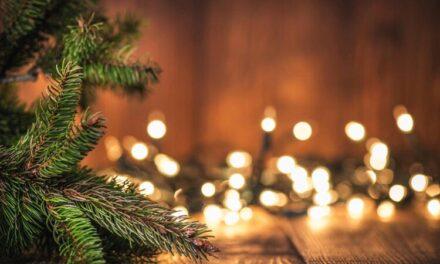 Cateheze de Crăciun pentru tineri