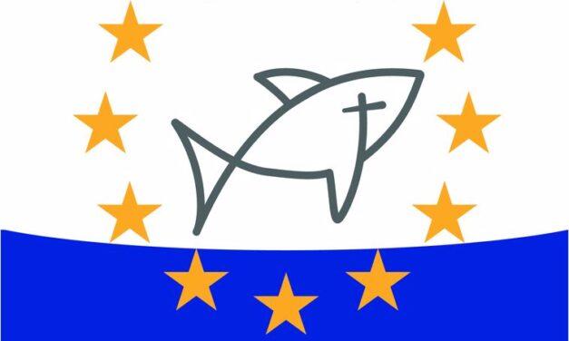 Document de poziție al secretariatului COMECE privind RAPORTUL SITUAȚIEI SĂNĂTĂȚII ȘI A DREPTURILOR SEXUALE ȘI REPRODUCTIVE ÎN UE, ÎN CADRUL SĂNĂTĂȚII FEMEILOR