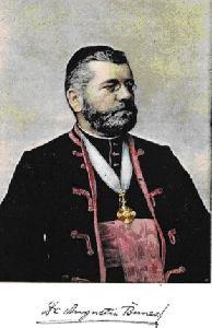100 de ani de la trecerea la cele vesnice a preotului si carturarului Augustin Bunea (1857-1909),