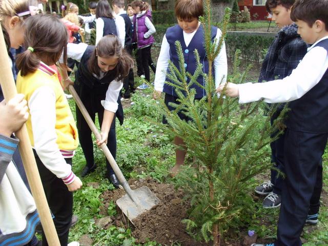 Plant a tree for peace! Scolile planteaza copaci în cadrul unui eveniment-fenomen la nivel global,