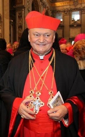 Mesajul Preafericirii Sale Cardinal Lucian adresat Presedintelui ales al României,