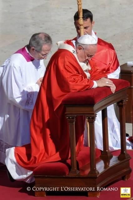 Gândul Papei Francisc adresat tinerilor pentru Întâlnirea Mondiala a Tinerilor si victimelor dezastrului aviatic,