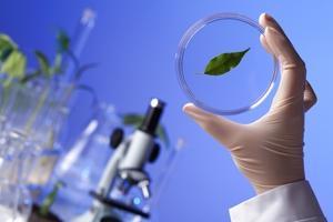 Biologia sintetica: proiecteaza viata fara riscuri?,