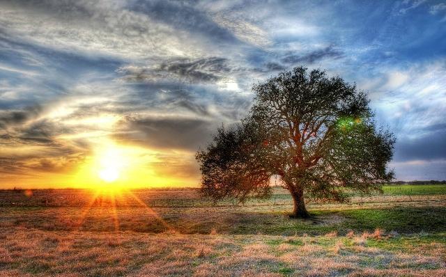 Timpul pentru Creatie: un timp de rugaciune pentru lume si pentru mediul înconjurator,