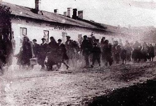 Ultima evreica care mai locuieste la Auschwitz le-a vorbit studentilor Seminarului Teologic din Oradea,
