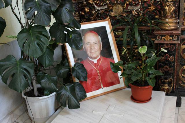 Centenar – Cardinal Alexandru Todea,